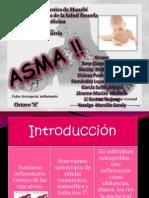 Asma Exposicion