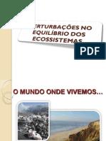 desiquilibrio-ambiente-1234367429982674-3