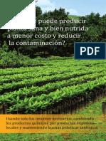 Folleto Aguacate final difusion.pdf