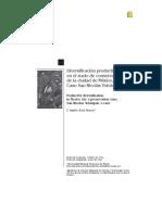 Avila 2012. Diversificacion Productiva en El Suelo de Conservacion. San Nicolas Totoloapan