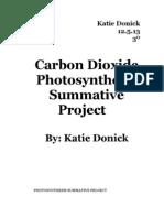 co2 summative project