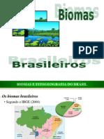 Biomas Brasileiros_sustentabilidade