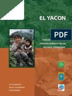 Yacon Fundamentos