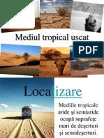 Mediul Tropical Uscat