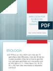 Biotecnología Clase 18