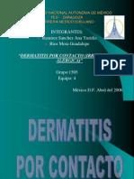 Dermatitis Alergica