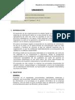 Syllabus Topicos Avanzados de Gestion Informatica