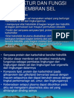STRUKTUR-DAN-FUNGSI-MEMBRAN-SEL.ppt
