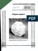 Geometria17 Poligonos Regulares