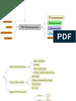 TM website analysis