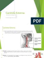 Arterias de la región cervical anterior