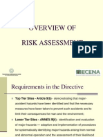 Risk Assesment Overview