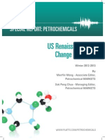 Us Shale Gas Report 13