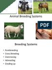 Animal Breeding System