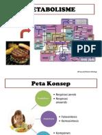 metabolisme-121219000223-phpapp02