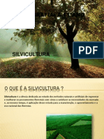 silvicultura-110630121005-phpapp02