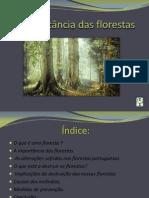 aimportnciadasflorestas-110329100401-phpapp01