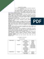 CLASES_DE_PALABRAS.doc