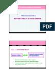 BioEng 111606 Lecture