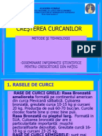 8257 - cresterea curcanilor1