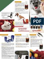 Nutraceuticals Leaflet ENG