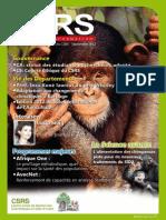 BI CSRS N° 004