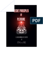 In10Se - Secret Principles of Pleasure