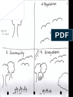 ecosystem chart