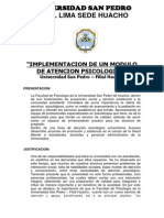 Programa COPSI Huacho