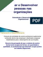 Treinar e Desenvolver Pessoas.pdf