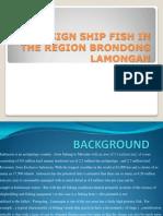 Redesain Ship Fish