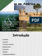 cesarebrunohenrique-110905081837-phpapp01
