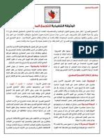 الوثيقة التنفيذية للتجمع المصري 11-12-13