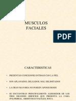 bocalenguamusculosdelaexpresinfacial-130326144609-phpapp02
