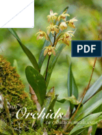 Orchid Book Preview 2