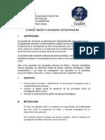 Programa Redes y Alianzas Estrat Gicas.