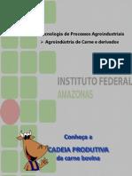 Agroindústria - Carne e Derivados