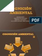 Cognición ambiental