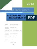 Informe Visita a Ite(. David Conde Copa)