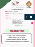 PATOLOGÍA GENERAL I_ ENTREGA DE PRODUCTO III_FISURA LABIO PALATINA