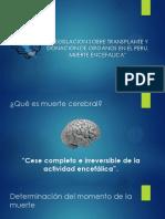 muertecerebral-130411192751-phpapp02