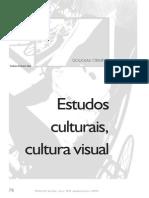CRIMP, Douglas. Estudos Culturais, Cultura Visual.