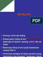 Bivalvia Dan Cephalopoda