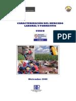 Estudio_Caracterizacion Mercadoi Laboral CUSCO