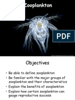 Zooplankton Session i