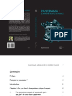 Resume - Panorama - le marché du gaz en France - Baptiste Desbois