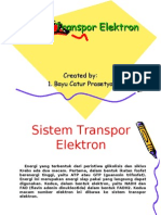 Sistem Transpor Elektron