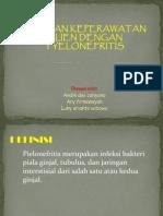 Pp.pielonefritis.com