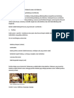 Pembagian Jenis Hewan Vertebrata Dan Avertebrata Lengkap