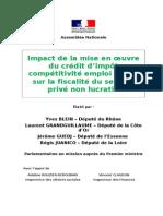 Rapport sur l'impact de la mise en œuvre du crédit d'impôt compétitivité emploi sur le secteur privé non lucratif